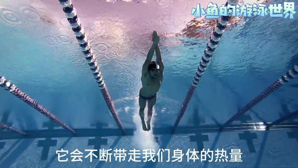 怎样游泳才能减肥,一周游几次能减肥