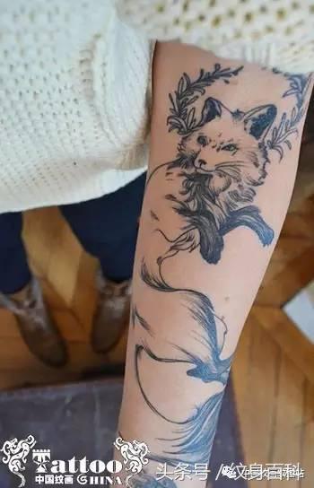 九尾狐貍圖片