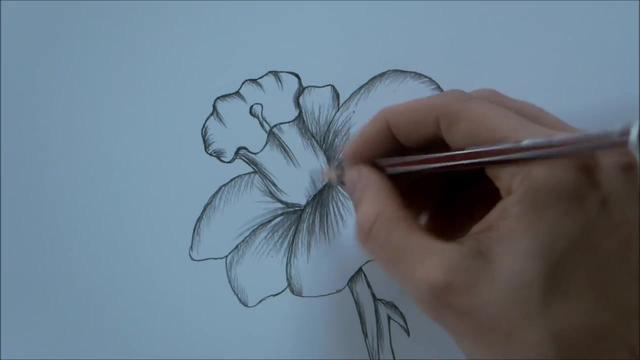 人物铅笔画简单