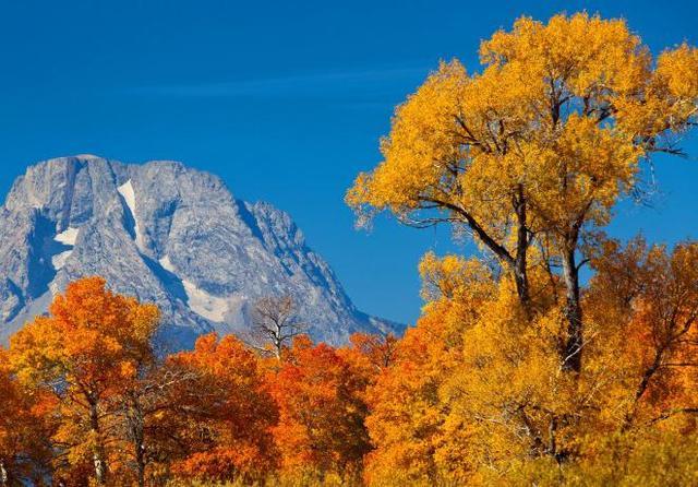 立秋图片大全高清无水印唯美风景 秋的脚步已来临