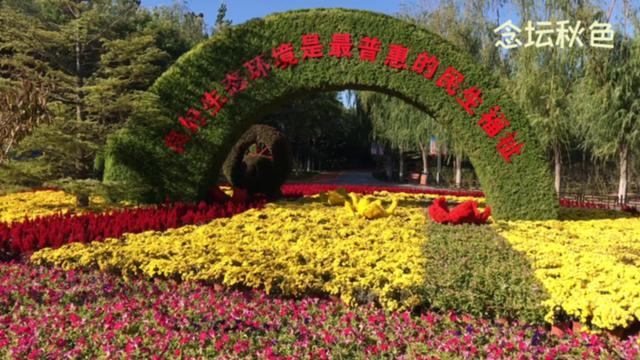 春天的北京大兴区 念坛公园,南海子公园,野生动物园赏花,郊游