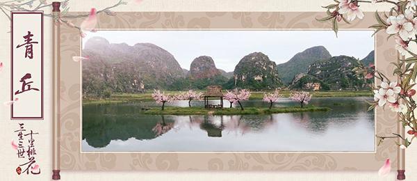 青丘狐传说花月图片