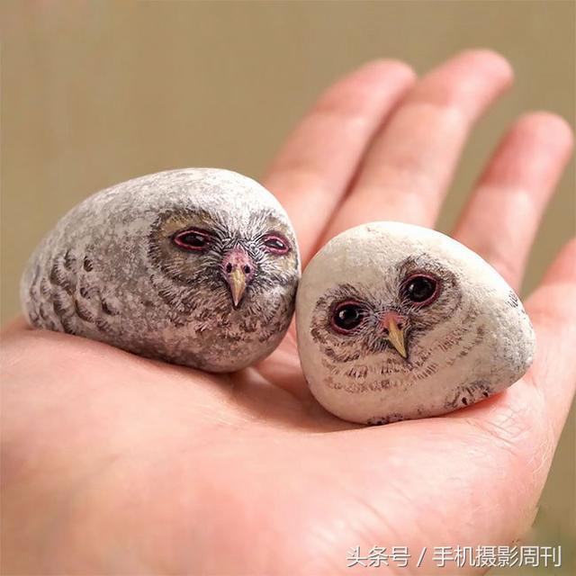 这些动物居然是在石头上画的,太有创意了!