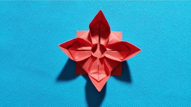 西瓜折纸王子折纸杨桃花,简单漂亮,儿童很喜欢