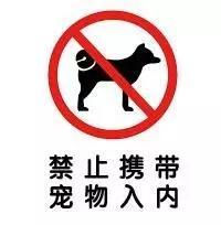 酒店猛狗,网友询问酒店能否带狗入住,结果酒店老板的回答让大家疯狂点赞!