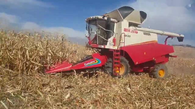转让17年哈克三行玉米收割机