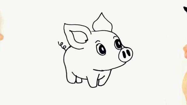 猪简笔画图片大全可爱