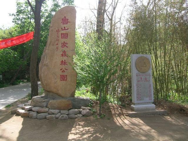 山东淄博鲁山森林公园_美篇