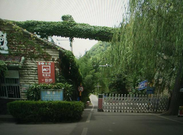 2020翠华山能开车上去吗
