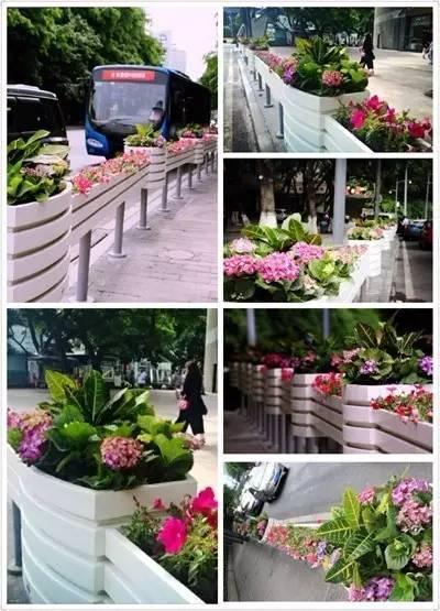 安平学校花坛护栏厂家外形美观-安平县皇鑫丝网制品有限公司
