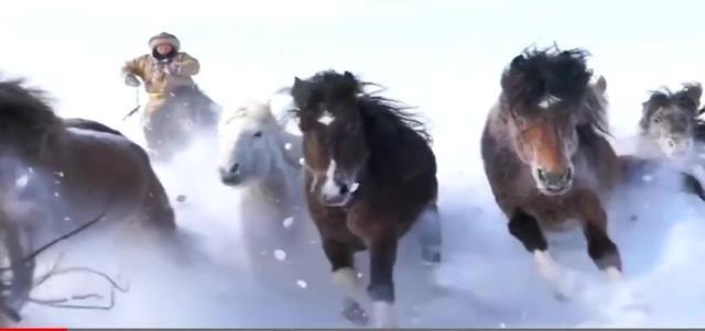 奔馬電動三輪車