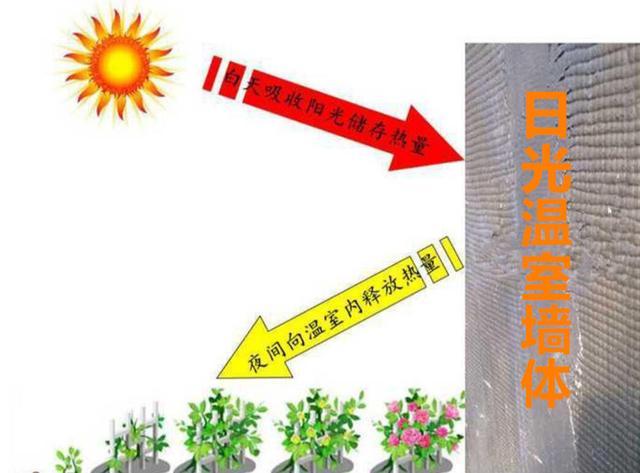 温度达到多少才能算合格的冬暖式日光温室大棚,暖棚建造参考指南