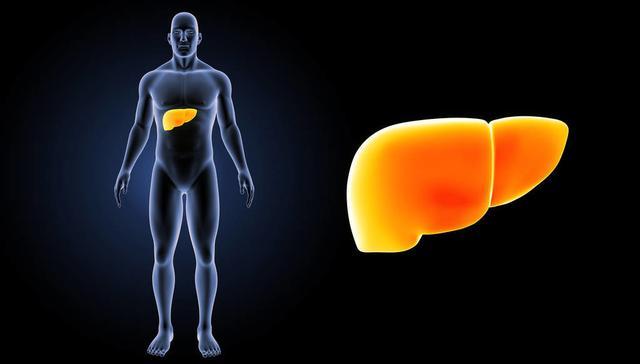 甘油三脂高,脂肪肝容易得!久拖肝受损,饮食注意这5点,能预防