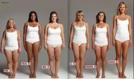 脂肪和肉的比例