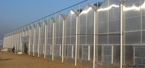 渐行渐远的阳光板温室何去何从,看阳光板温室的优缺点