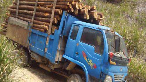 灵异故事:林场运木头的司机讲述的诡异遭遇