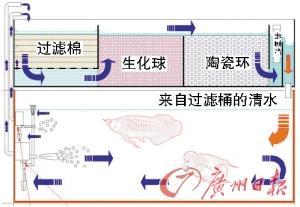 鱼缸过滤系统制作图解