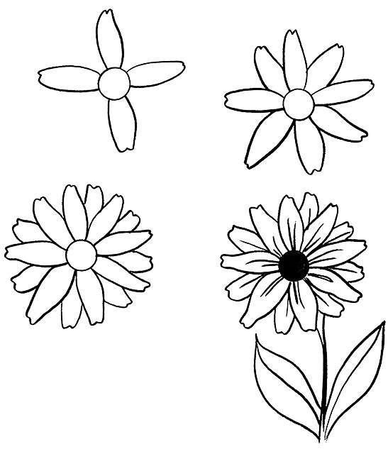 零基础入门,教你超简单的花朵简笔画