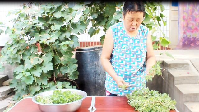 【步骤图】美味野菜【凉拌马齿苋】的做法_美味野菜【... _下厨房