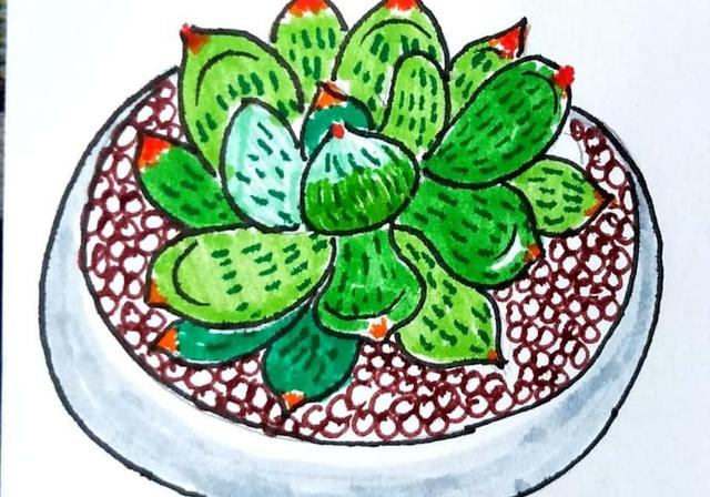 儿童简笔画;如何画一块肉一步一步的食物图纸