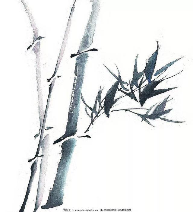 水墨竹画法,画竹子的好教程!_手机搜狐网