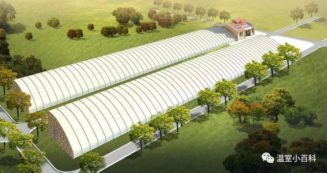 从零起步,教你温室大棚建造技术!