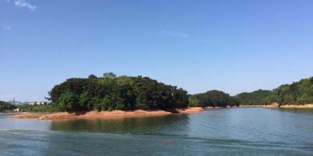 """6000亩樱花盛放!红枫湖畔的""""中国最美乡村""""宛若仙境,美爆"""