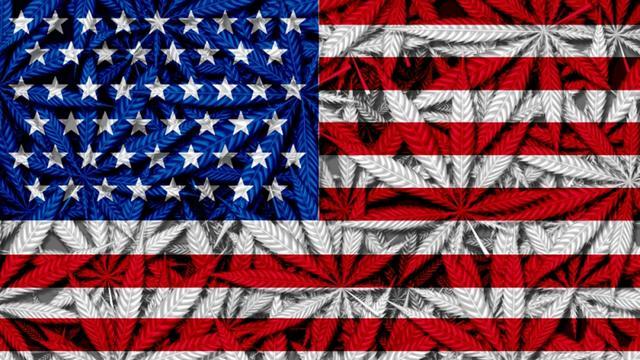 """美国种大麻""""上瘾""""了?大麻销量猛增40%,直逼370亿美元"""