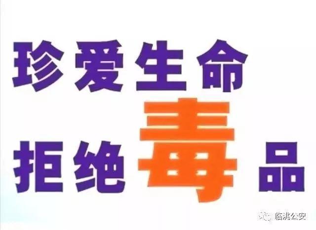 临洮庙巷里红梅旅社是干嘛的
