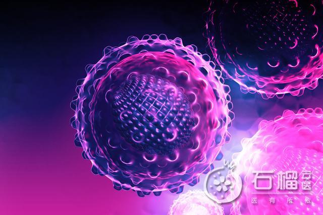 圆环病毒怎么治疗