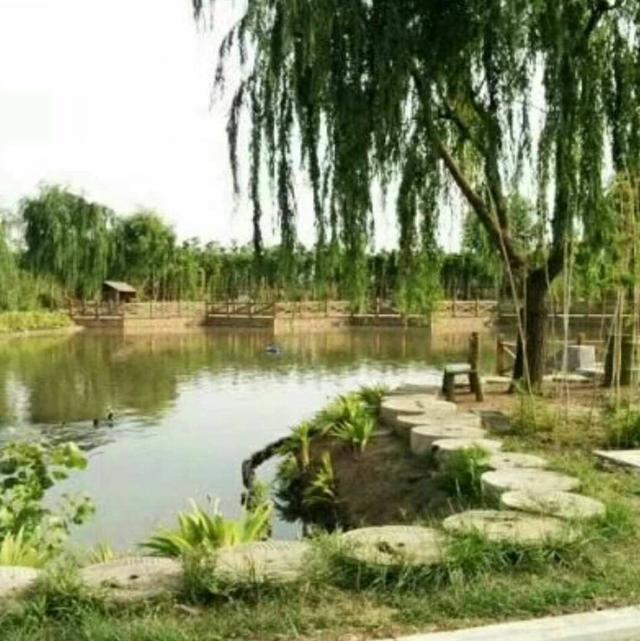 绿化景观设计图片展