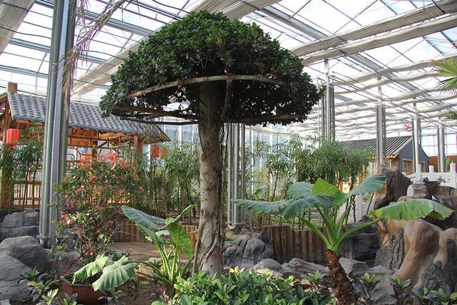 惹人喜爱阳光房玻璃温室休闲乐园,逐步成为北方私家园林的标配