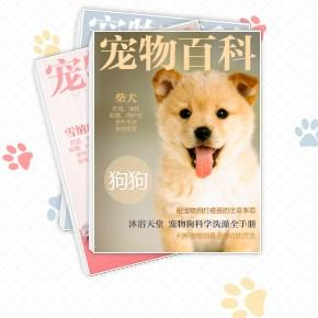 狗狗品种大全,狗狗品种图片