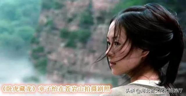 蒋勤勤玉娇龙图片