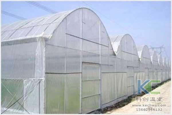 温室大棚图片