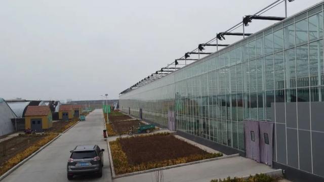 阳光板温棚建造图片:智能阳光板温室如何建造呢?-养殖技术网
