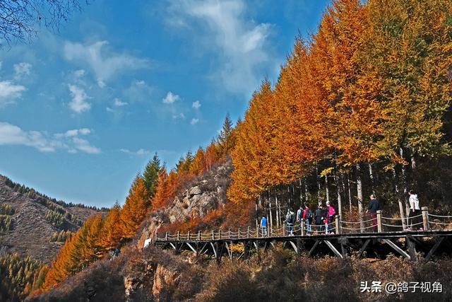 2020内蒙古包头旅游攻略-包头景点排行榜