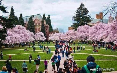 美国名校:华盛顿大学西雅图分校