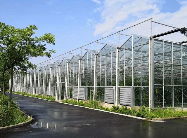 我国北方玻璃温室大棚建设造价需要多少钱?需要考虑哪些问题?