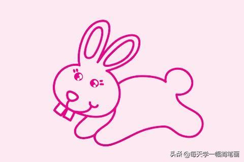 兔子简笔画怎么画步骤?兔子简笔画图片大全 - 致富热
