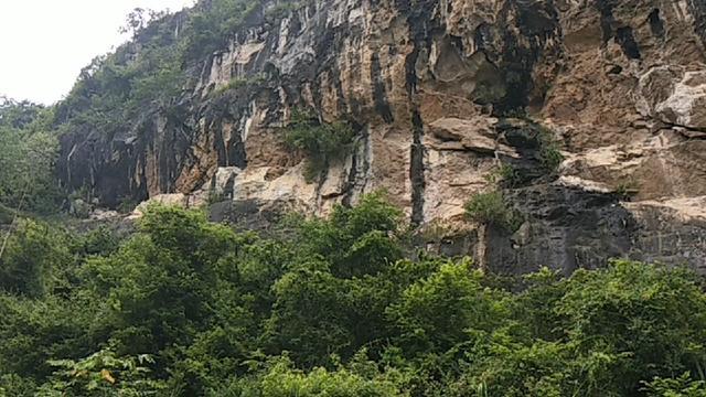 今天带大家看一下我们广东阳春市陂面镇三朗的淮山种植基地和风景