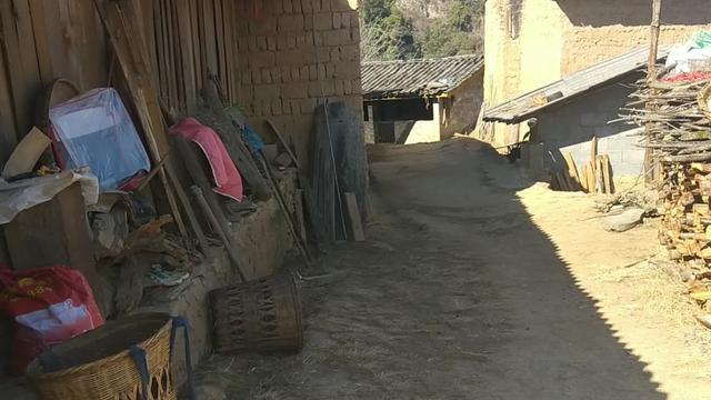农村夫妻去山上探年,深山老林隐居的老夫妻生活挺不错的