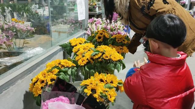 向日葵为什么会跟着太阳转呢?-花卉盆景网