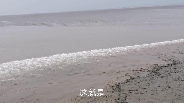 实拍:八月初三钱塘江大潮蔚为壮观 回头潮直扑上岸!