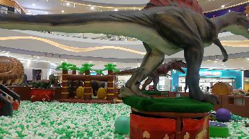 【中国/惠安】航拍禹州商业广场/上帝视角/惠安城市中心 生动...