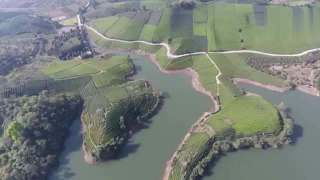 萍乡鹅湖公园