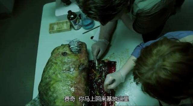 巨型食人鱼