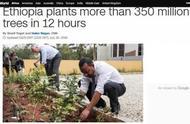 半天内种3.53亿棵树!埃塞俄比亚这个植树活动,可能创世界纪录