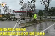 台风利奇马最新消息 上海10万多人撤离 台风利奇马结束时间及最新路径图