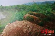 广西两兄弟伪造16座坟墓骗补6万多元 双双获刑被罚款